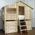 Playhouse Bunk Bed Wdoor Pics With Marvelous Ana White Playhouse pertaining to Tree House Bunk Bed Plans